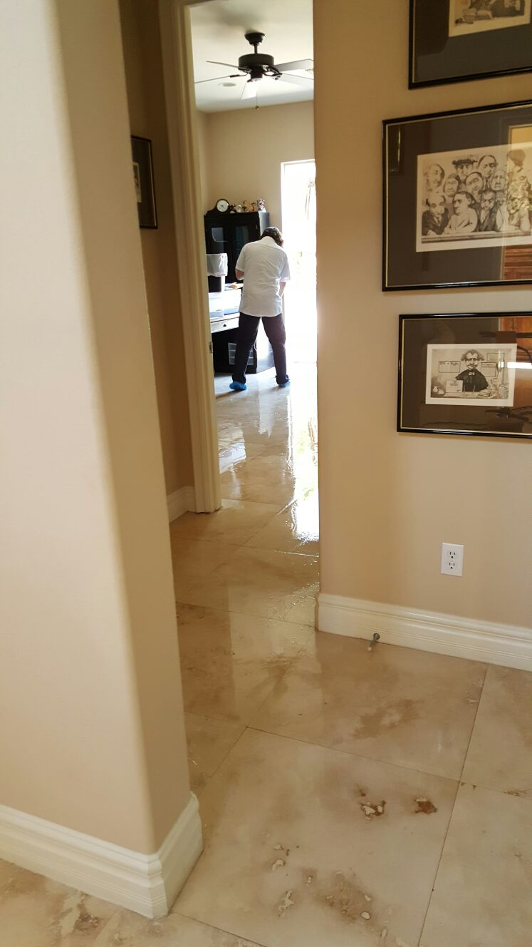 Hard Floor Cleaning Las Vegas