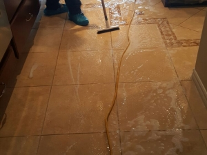 Silver State Floor Restoration - Green Valley, NV